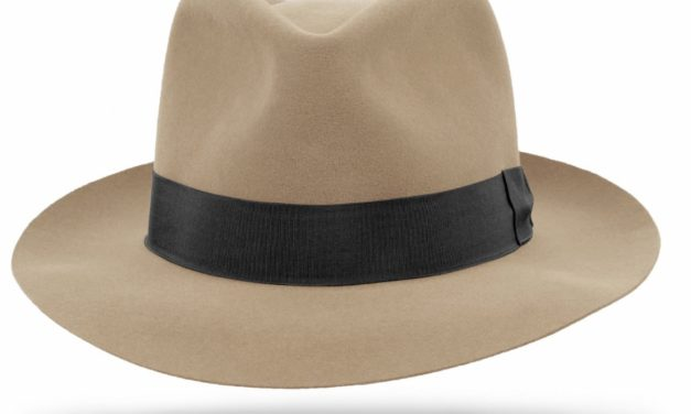 SOME FEDORA HATS – FALL 2016-17