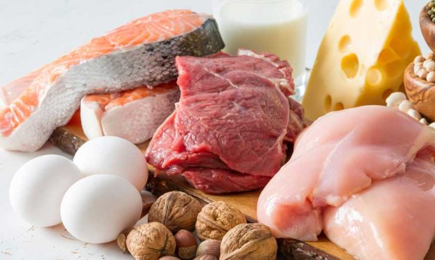 Protein: The Popular Macronutrient